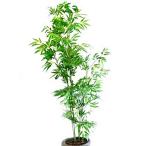Bambu Reto 1,90cm Plantas Artificiais Decoração - 587556