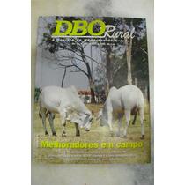 Revista Dbo Rural - Ano 18 - No 228 - Out/1999