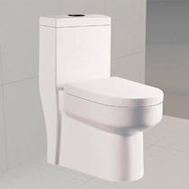 Vaso Sanitário Com Caixa Acoplada Pettra Turquesa Branco