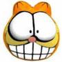 Enfeite Porta Quarto Carro Casa Gato Garfield Catnip Ração