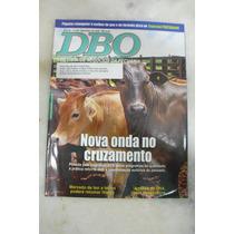 Revista Dbo Rural - Ano 28 - No 349 - Nov/2009