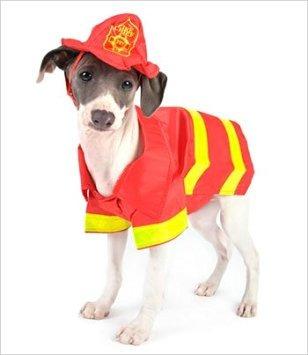 Resultado de imagen para disfraz de perro bombero