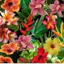 Varios - V14 - Flores - Ancho 0,50m