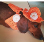 Chapéu Pet E Colarinho Em Crochê Cães E Gatos