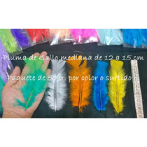Plumas De Gallo Mediana X 50 U. Color O Surtida