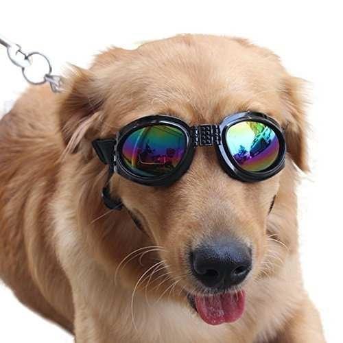 gafas de sol para perros grandes