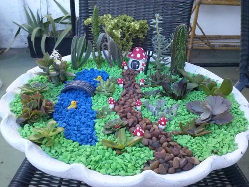 mini jardines cactus crasas o sucu