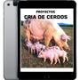 Colección De Proyectos Manuales Cria De Cerdos - Ebook Pdf