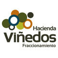 Desarrollo Hacienda Viñedos