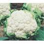 Sementes Couve Flor Bola De Neve Salada Horta Organica Pomar