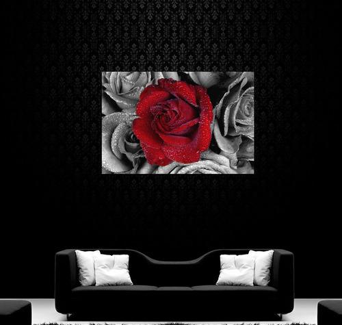 cuadro rosa roja blanco negro flor hermosa rocio 80x120cm