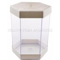 Aquário Beteira 1 Litro Litwin Branca Para Peixe Betta