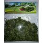 Moringa Oleifera Peruana Importada Hojas