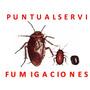 Fumigación Contra Cucarachas Chiripas Alacranes Zancudos.