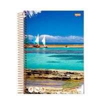 Caderno De 400 Folhas Jandaia Brasilidade 20 Matérias