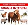 Libro De Cria De Gallinas , Cerdos,cachama Y Vacas Lecheras