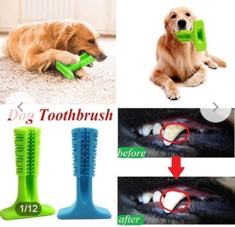 9071237d6 Toothbrush.cães-brinquedo -mantém Dentes Limpos-frete Grátis - R  69 ...