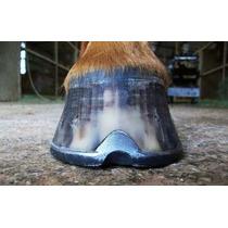 Casqueamento , Ferrageamento De Equinos Curso Em 3 Dvds