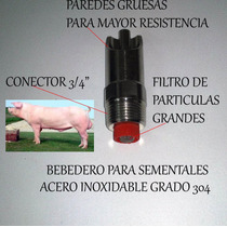 Bebederos Automáticos Para Cerdos Sementales