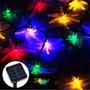 Luces Navidad Led Solares Libelula Multicolor 5 Mts