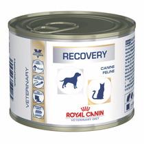 Royal Canin Recovery A Un Super Precio