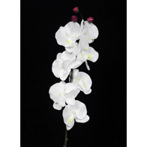 25 Orquideas Artificiais Brancas - Atacado Artificial Flores