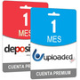 Pack Cuentas Premium Depositfiles Y Uploaded Por 30 Dias