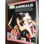 Revista Ole Animals Estudiantes De La Plata Tetracampeon Szw