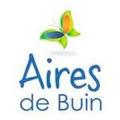 Aires De Buin