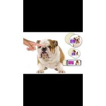 Bulldog Ingles Crema Humectante Para Tu Mascota.ultimas