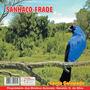Cd Canto-de Pássaros - Sanhaço- Frade -- Canto Galopado