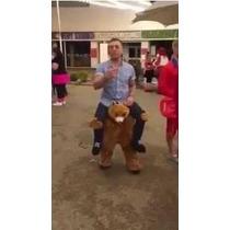 Disfraz Botarga Oso Teddy Bear Niño Adulto, Envio Gratis