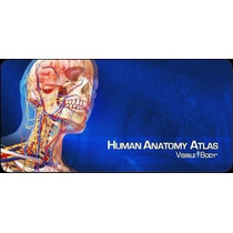 Atlas Anatomia 3d - Visible Body ( Software Completo )