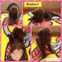 Labradores Retriever, Color Chocolate