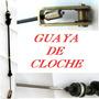 Guaya Aceleracion Festiva / Turpial