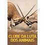 Clube Da Luta Dos Animais Dublada Frete Gratis