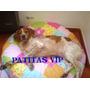 Funda Colchon Mascotas Cama Perros Gatos 70cm Diam. Listas!!