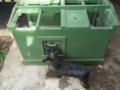 Casa de perro mediano 80 en mercado libre for Puertas perros medianos