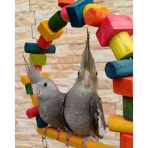 Balanço P Calopsita Periquitos Agapornis Encanto Das Aves