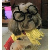 Túnica De Harry Potter Para Perro