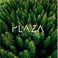 Proyecto Plaza Los Pinos