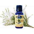 Aceite Esencial Árbol De Té / Tea Tree Oil 20 Ml
