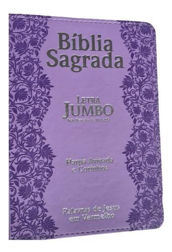 a bíblia sagrada letra jumbo  com harpa e corinhos