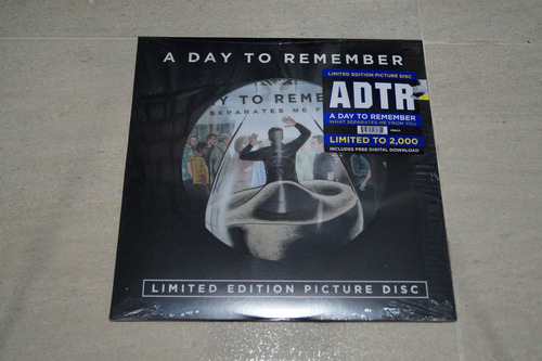 a day to remember what separates me vinilo rock activity