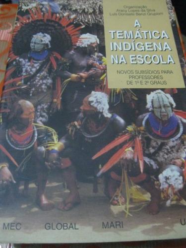 a temática indígena na escola aracy lopes luis benzi livro