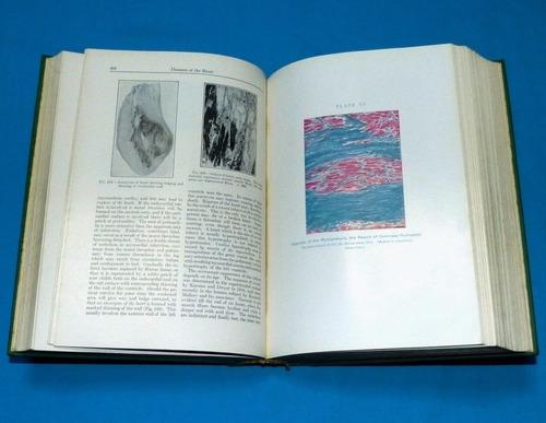 a textbook of pathology william boyd 1961 patología medicina