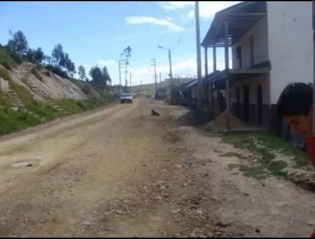 a tratar casa-terreno por mirador de luya urco-chachapoyas
