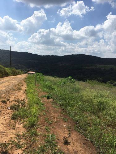 a01 terrenos c/ otima topografia, 300 m do asfalto