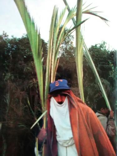 a3 gianni dal maso los palmeros de chacao