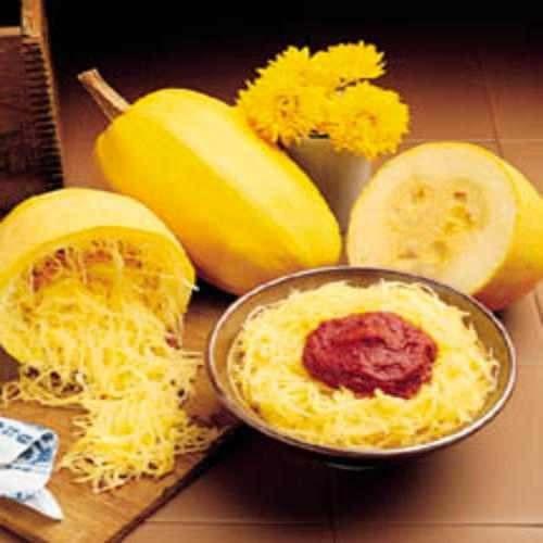 abóbora spaghetti - macarrão - espaguete sementes para mudas